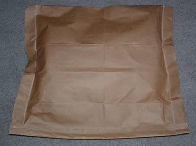 Paper Bag Mailer
