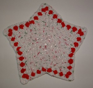 White & Red Star Dishcloth