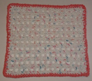 Mesh Magic Dishcloth Pink Trim